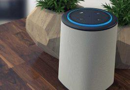 VAUX Cordless Home Speaker Review